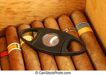 Cigars with cutter - Cigars in a humidor with cutter