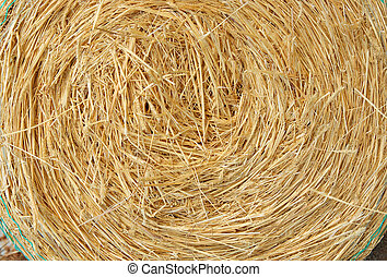 straw bale - a big round bale of yellow straw for stock feed