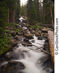 Calypso Cascades - Wild Basin Area, Rocky Mountain National...