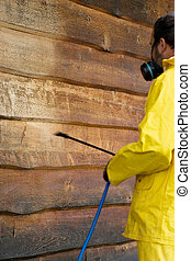 Washing the Siding - a man doing a chemical wash on the side...