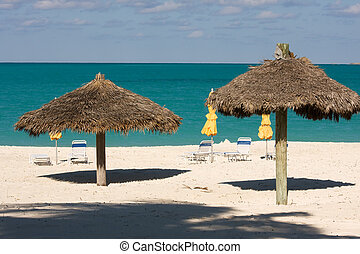 thatched sun shades - sun loungers under umbrellas on...