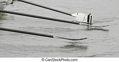 Oars On Novice Crew Boat - The oars of a novice crew boat...