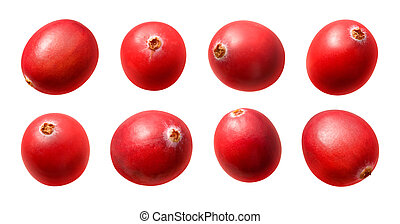 Cranberries - A photo of a cranberries isolated on a white...