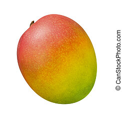 Mango - A photo of a single Mango isolated on a white...
