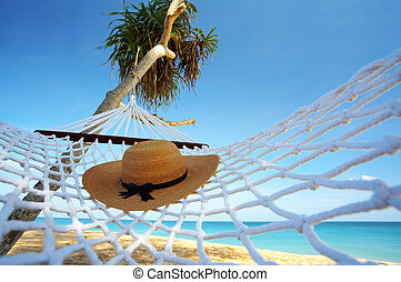 hat and hammock - view of nice white hammock hanging between...