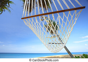 palms and hammock - view of nice white hammock hanging...