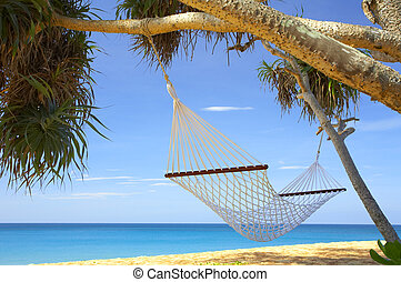 hammock - view of nice white hammock hanging between two...