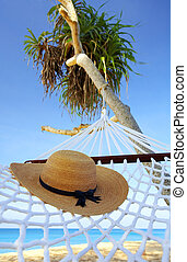 in the net - view of nice white hammock hanging between the...