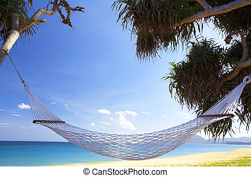 tropic hammock - view of nice white hammock hanging between...
