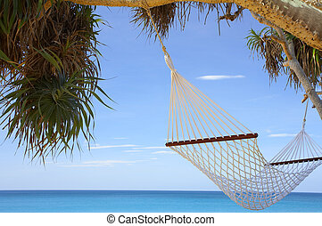 mangrove and hammock - view of nice white hammock hanging...