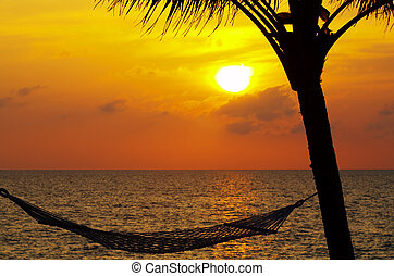 sunset - view of a hammock and some palm during sunset