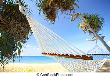 relaxing net - view of nice white hammock hanging between...