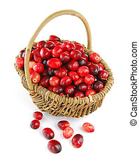 Cranberries in a basket - Fresh red cranberries in basket on...