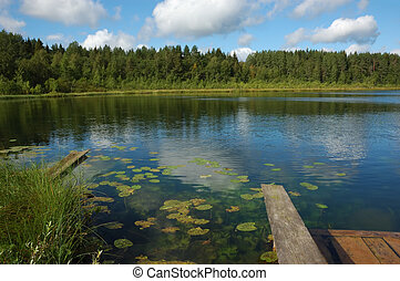Forest lake with clouds reflections in water