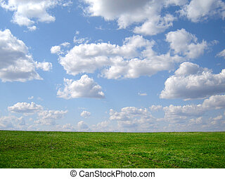 green grass and blue sky and horison