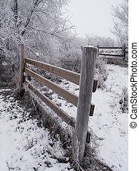 Frosted Fences - A frosted morning in rural South Dakota