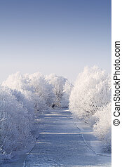 Frozen river with white frost trees - Frozen river flanked...
