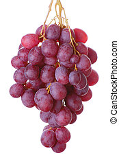 bunch of grapes - bunch of red cardinal grapes isolated on...