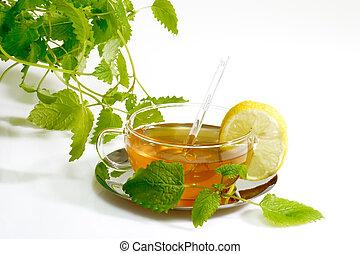 Herbal Tea with Lemon Balm Leaves