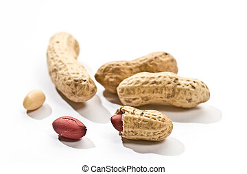peanut - Foodstuff theme: some peanut over white background...