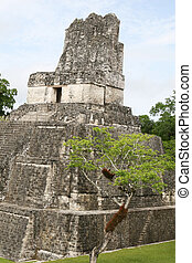 Tikal Temple II - Temple II at Tikal. Looming over 125 feet...