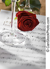 rose - red rose on a sheet of notes close up shoot