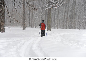 Man skiing in a forest during a snowfall