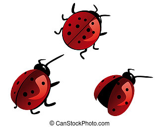 ladybird - Red spotty small ladybird vector
