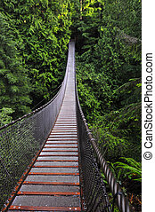 Lynn canyon supension bridge, Vancouver
