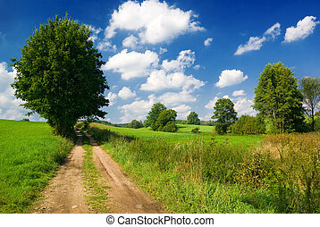 Country road - Saturated summer landscape - Lonely tree near...