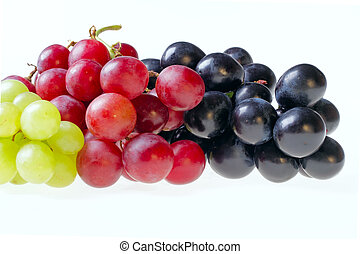Isolated grapes - bunch of isolated dark, green and red...