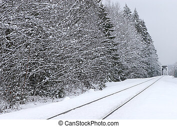 Railroad Tracks in Winter - Rural winter scene of Railroad...