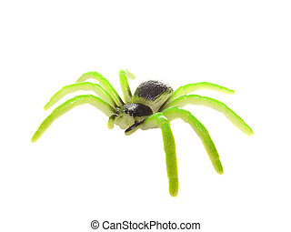 Acid colored spider isolated over white
