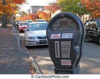Parking meter in Princeton. Fall - Parking meter in...
