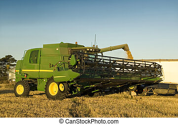 Combine Harvester - A modern combine harvester emptying...