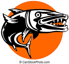 Barracuda - artwork on fishes
