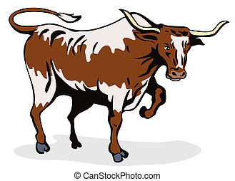 Texas long horn bull - Artwork of a bull