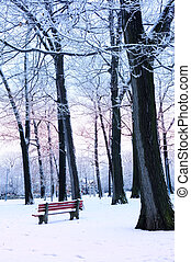Winter park covered with snow at dusk. Beach area, Toronto,...
