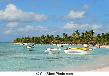tropical island - Seona Island tropical beach with boats,...
