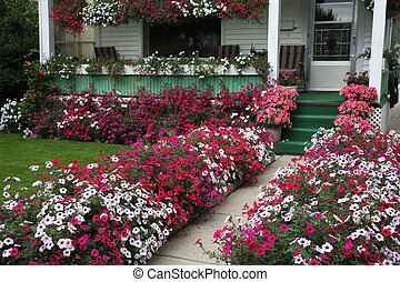 Curb Appeal - Hundreds of petunia blossoms add curb appeal...