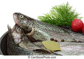Trout Breeding - Close-up of raw rainbow trouts in a pan...