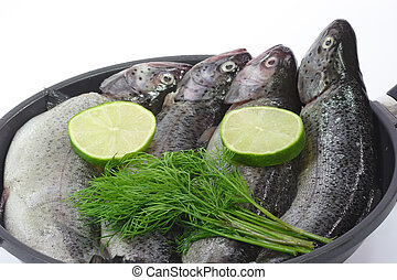 Rainbow Trout - Close-ups of raw rainbow trouts in a pan...