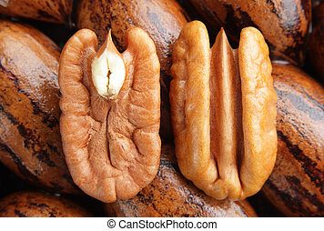 Pecan halves on background - Pecan halves on a group of...