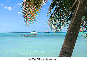 tropical Caribbean beach - ocean with boat on the Caribbean...