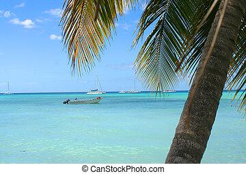 tropical Caribbean beach - ocean with boat on the Caribbean...