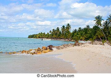 tropical island - Seona Island tropical beach with boats,...