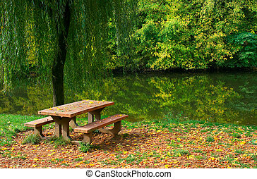 Picnic table by the river - Picnic table, grass and trees by...
