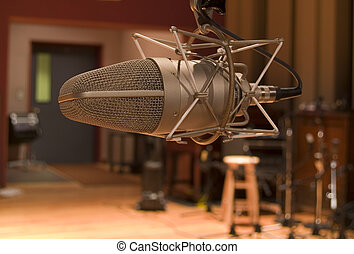 Studio Microphone - Expensive high end microphone in large...