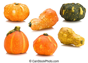 pumpkins decoration isolated on white background