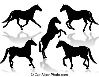 Horses silhouettes - Black horse silhouettes in different...